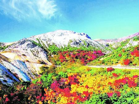 Д-р Гео НешевГрехота е за чудото на българската природа -
