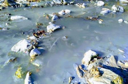 Снимка: Екокатастрофа грози Кюстендилско