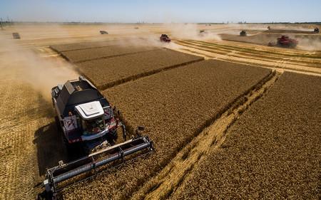 "Наскоро в. ""Уолстрийт джърнъл"" проплака, че рекордната реколта и износ"